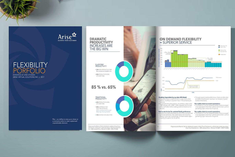 Arise Portfolio Brochure