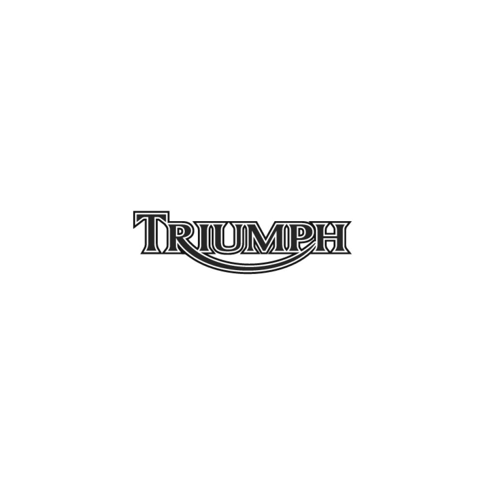 l21561-triumph-motorcycles-logo-84296
